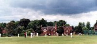 Cranleigh_cricket.jpg
