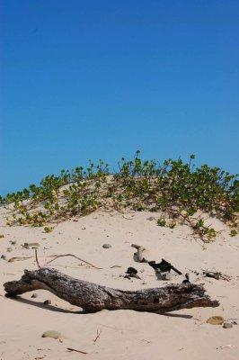 Cintsa Beach