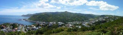 Island Bay View