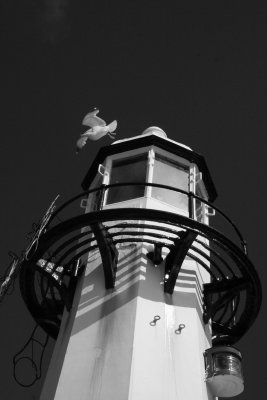 Lighthouse on St Ives Harbour