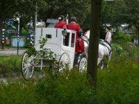 Slow traffic in Leiden