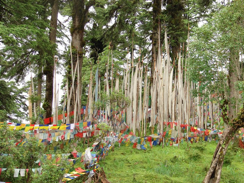 Prayer Flags at Druk Wangyal