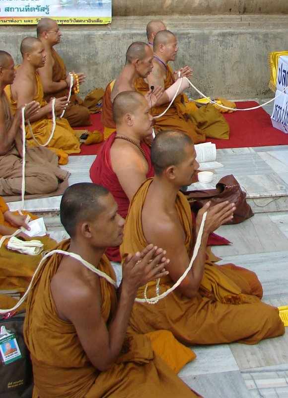 Chanting Monks next to the Bodhi Tree