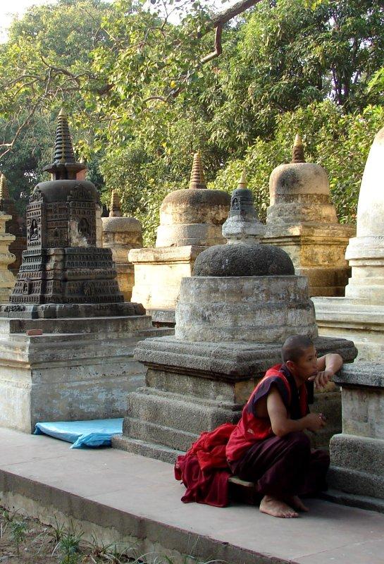 Amid the stupas