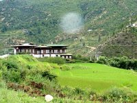Farm House and rice paddy, near Paro