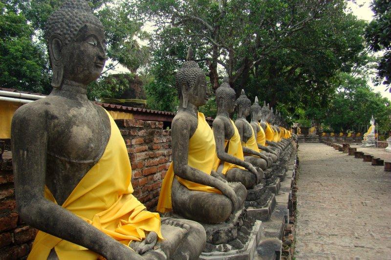 buddha's sculptures around a temple in ayutthaya