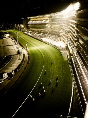 Happy Valley horse racing