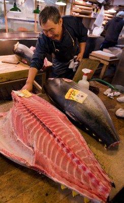 3Tokyo_tuna..5-09_34.jpg