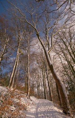 Derbyshire.._12-20-.jpg