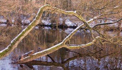 Derbyshire.._12-23-.jpg