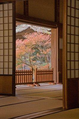 Kamakura_b..DSC9286.jpg
