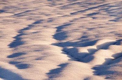 Lancs_snow..26-09_4.jpg