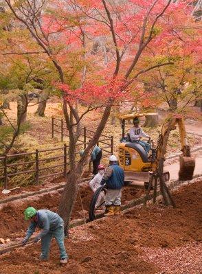 Nara_digge..09_3940.jpg