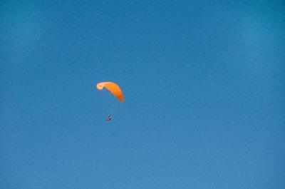 Orangehang..dited-2.jpg