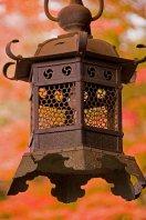 Nara_lantern_11-19-09_3929