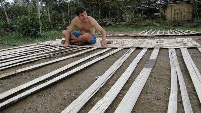 Jay weaving bamboo