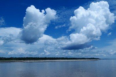Brazilian Amazon views