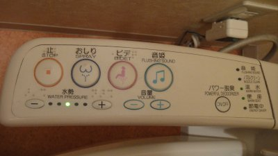 Toilet_Controls.jpg