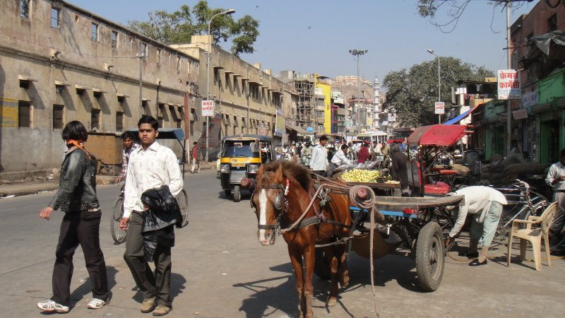 large_4The_street..__India.jpg