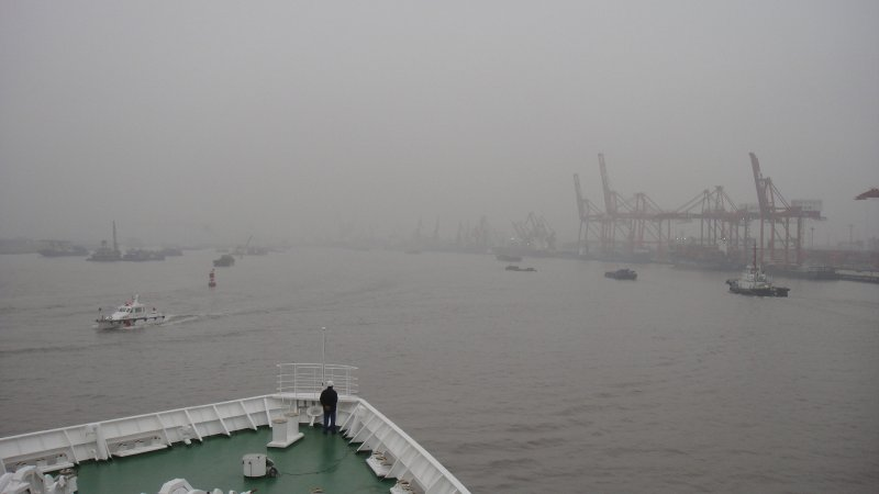 large_Cranes_alo..Harbour.jpg