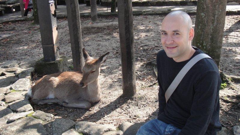 large_Deer_and_M..iyajima.jpg