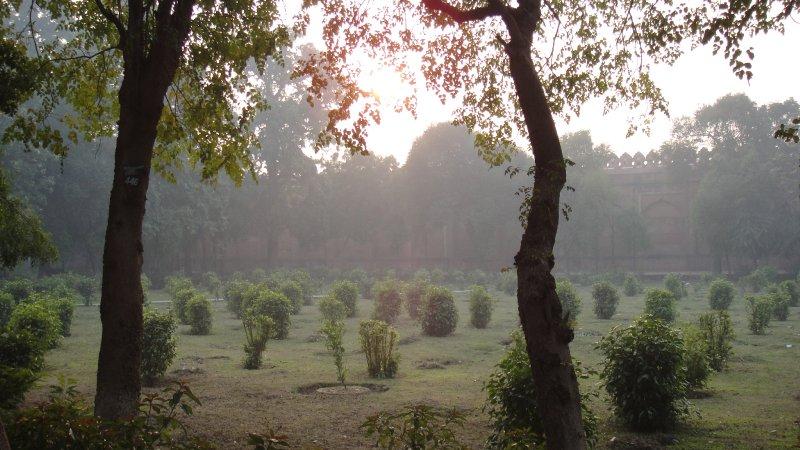 large_Garden_in_..__India.jpg