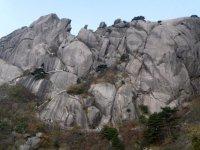 Yellow Mountain/Huangshan