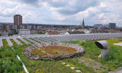 Basel_02.jpg