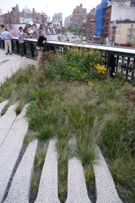 Highline8.jpg