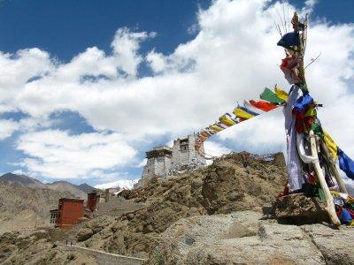 IMG_8837_T.._Ladakh.jpg