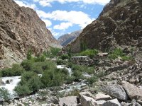 IMG_8925_A.._Ladakh.jpg