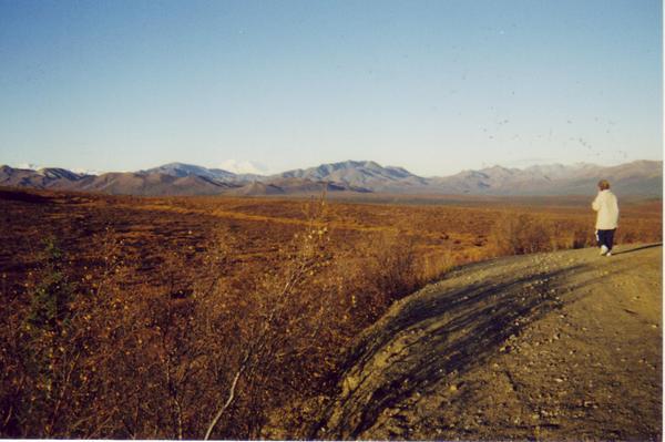 Jim Colyer in Alaska 12