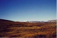 Jim Colyer in Alaska 11