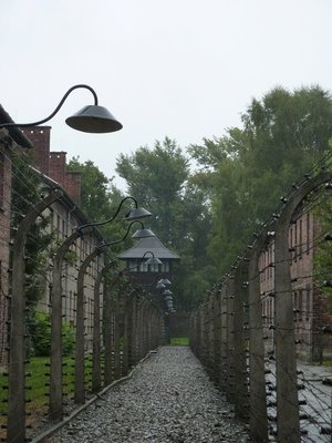 90_Auschwitz_barbed_wire.jpg
