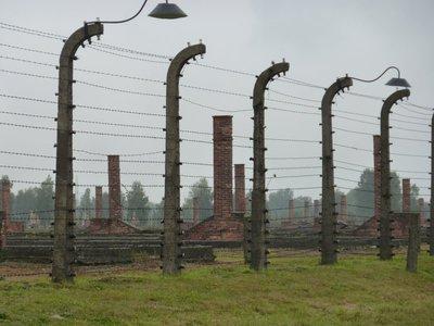 Birkenau fence and chimneys