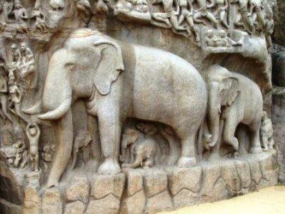8_Elephants_in_A_s_P.jpg
