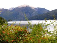 Alercis Park Across the Lake