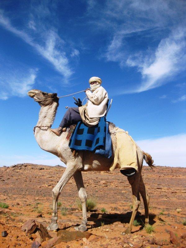 Nomadic Tuareg camel herder