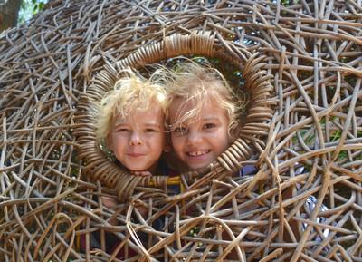 Bird's Nests, Company Gardens