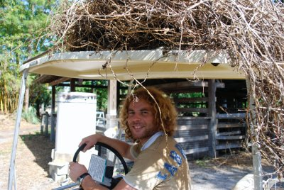 Spot the difference between the hair and hay stack (clue... there is no difference)