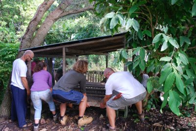 Lifting the ducks' house