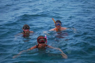 Snorkelling in Malindi Marine National Park