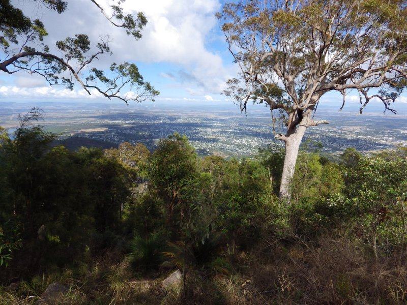 2013 Sep 9 Rockhampton from the top of Mount Archer