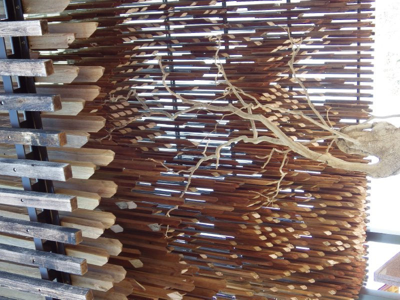 2013 Sep 5 Tree of Knowledge at Barcaldine 2