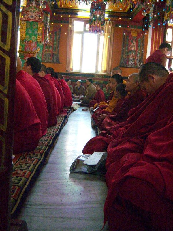 Buddhist Monks in ceremonial meditation