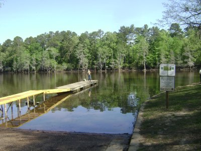Caddo_Lake_LA_003.jpg