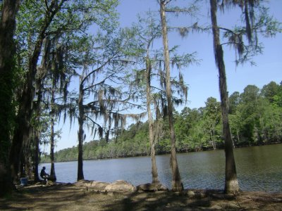 Caddo Lake LA 015