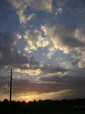 Texas_Loui..ppi_497.jpg