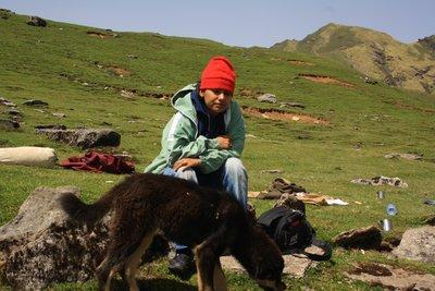 Uttarakhan..-28_392.jpg