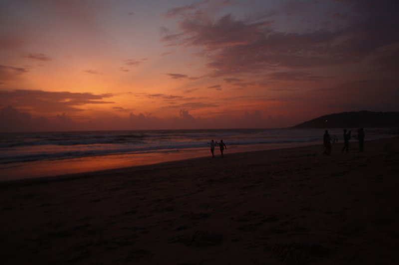 large_5_0_Cobra_Vaddo_Beach.jpg